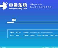 小鱼一键重装系统总裁专业版系统大师下载官方版5.36